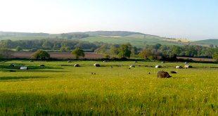 Farm Work in England